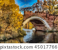 Golden autumn. Illustration 45017766