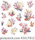 Plasticine succulent with flowers illustration. Bouquets and arr 45017812