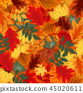 Naturalistic multicolored autumn leaves beautifully laid out on background. Vector Illustration 45020611