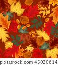 树叶 背景 枫树 45020614