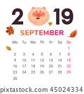 2019 猪 日历 45024334