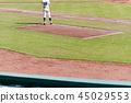 야구장 야구 관람 45029553
