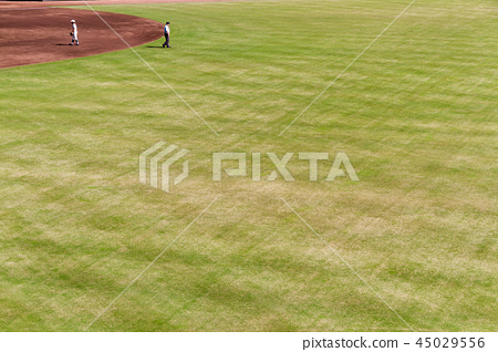 Baseball field watching baseball 45029556