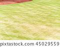 야구장 야구 관람 45029559