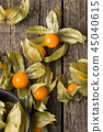 Physalis peruviana fruit. 45040615