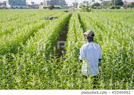 年農民的天空調查智知智農業產業4.0智慧農業智慧農業 45040992
