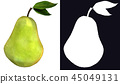 Single green pear with stem and green leaf  45049131