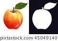 Single yellow-red apple with stem and green leaf 45049140