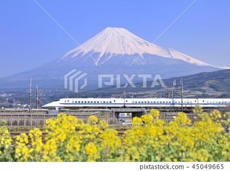 新幹線和富士山5363 45049665