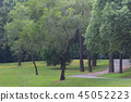 the nature of background at outdoor 45052223