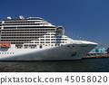 遊輪 船舶 海運 45058020