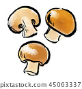 붓 그리기 버섯 45063337
