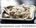 蘑菇 45068894