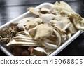 蘑菇 45068895