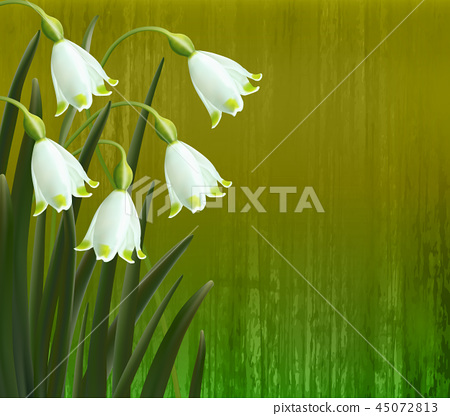 Floral background. Spring flowers. Snowflakes. 45072813