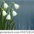 Floral background. Spring flowers. Snowflakes.  45072814