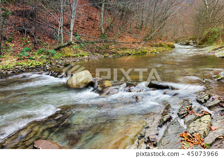 forest river with rocky shores 45073966