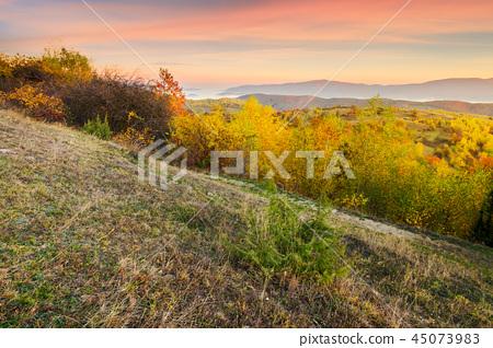 autumn sunrise in mountains 45073983