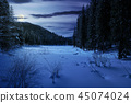 winter forest in mountains at night 45074024