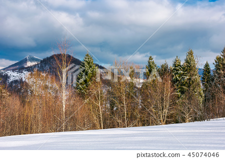 lovely winter landscape in mountains 45074046