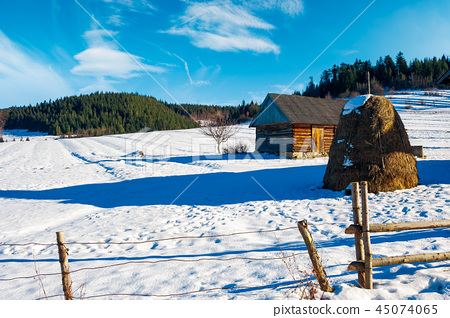 abandoned barn in Carpathian mountains 45074065