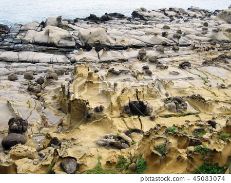基隆和平島象鼻岩 45083074