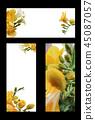 봄 초대장, 봄 프레임, 초대장 백그라운드 45087057