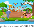 Cartoon wild animal with blank board in the jungle 45089278