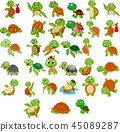 Cartoon turtle collection set 45089287