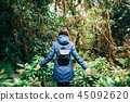 Back view of traveler woman walking in forest 45092620