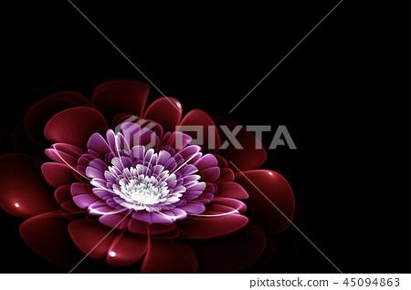 purple fractal flower 45094863