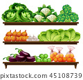 green lemon organic 45108739