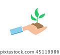 Little Green Growing Sprout on Flat hand 45119986