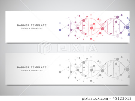 Vector banners and headers for site with DNA strand and molecular structure. Genetic engineering or 45123012