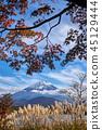 Mt. Fuji Shojiko秋葉 45129444