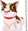 cute dog puppy 45134197