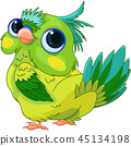 Cute Baby Parrot 45134198
