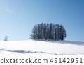 winter, frozen, field 45142951