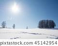 winter, frozen, field 45142954