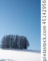 winter, frozen, field 45142956