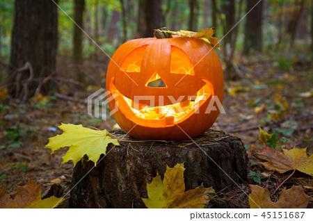Halloween pumpkin glowing in the dark forest 45151687