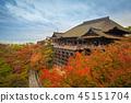 kiyomizudera, building, scenery 45151704