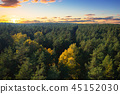 Beautiful autumnal forest at sunset in Poland 45152030