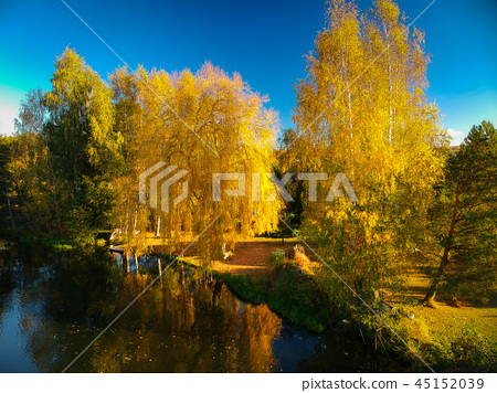 Beautiful autumnal scenery at the lake in Poland 45152039