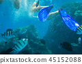 Red Sea underwater with tropical fishes, Egypt 45152088