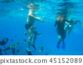 People at snorkeling in Red Sea with fishes, Egypt 45152089