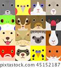 各种宠物脸设置 45152187