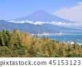 ภูเขาฟูจิจากยอดเขาฮิรายาม่า - 8521 ของญี่ปุ่น 45153123