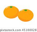 ส้มแมนดาริน 45160028