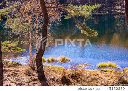 (나가노 현) 가을 하나님 射鹿 연못 45160880